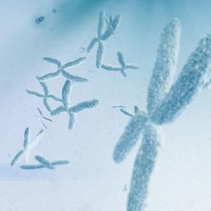 Плохое наследство: Стоит ли бояться генетических болезней