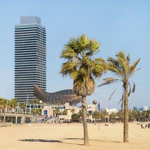 Как я влюбилась  в Барселону и переехала  туда жить