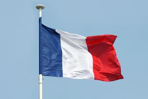 Во Франции секс с детьми младше 15 лет приравняют  к изнасилованию