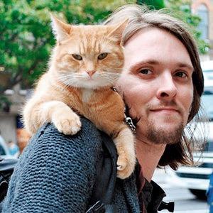За кем следить: Джеймс Боуэн, друг кота и писатель
