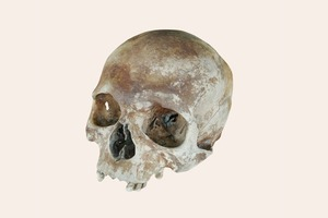 В закладки: 3D-модели одежды, предметов  и останков XVI века