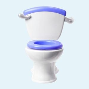 Неприкасаемый: Можно ли садиться в общественном туалете