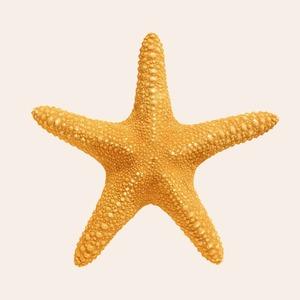 Плавали — знаем: 13 мифов о купании, в которые пора перестать верить