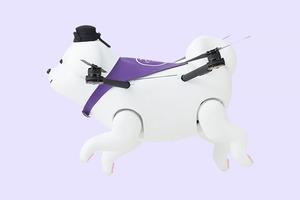 Видео с летающей собакой-дроном из Японии