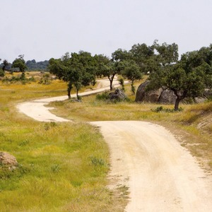 Как я прошла тысячу километров по Испании за 33 дня