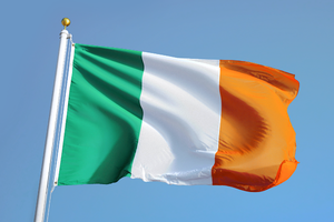 Большинство ирландцев проголосовали  за легализацию абортов