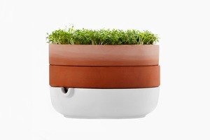 Горшок IKEA для проращивания семян