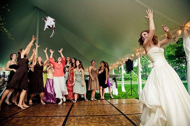 Блог Brides Throwing Cats про невест и летающих кошек. Изображение № 1.