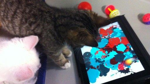 Рисунки бездомных кошек выставили на аукцион. Изображение № 2.