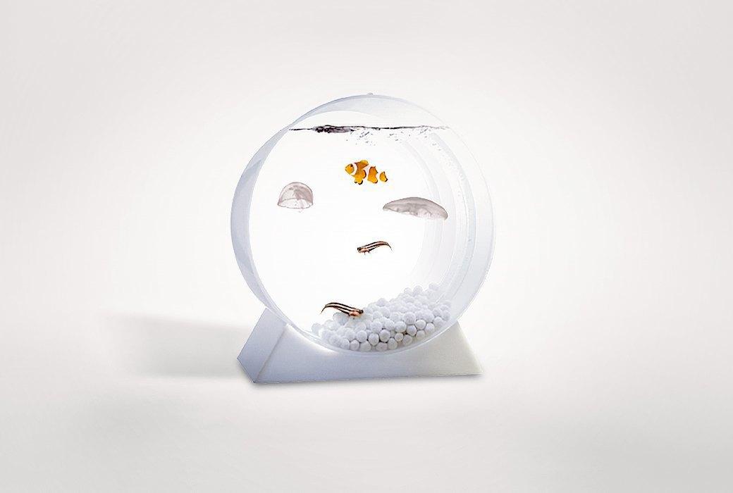 Настольный аквариум  с медузами Jellyfish Art. Изображение № 1.