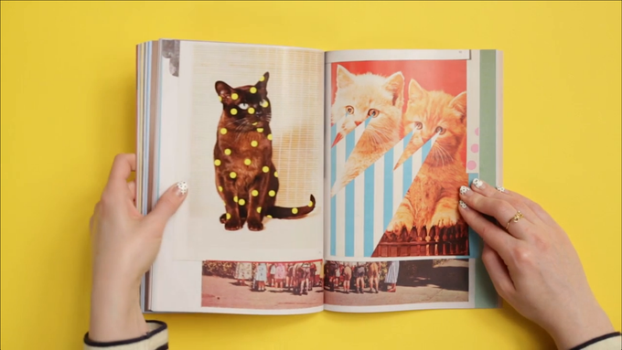 Cat People:  Журнал об одержимости кошками. Изображение № 3.
