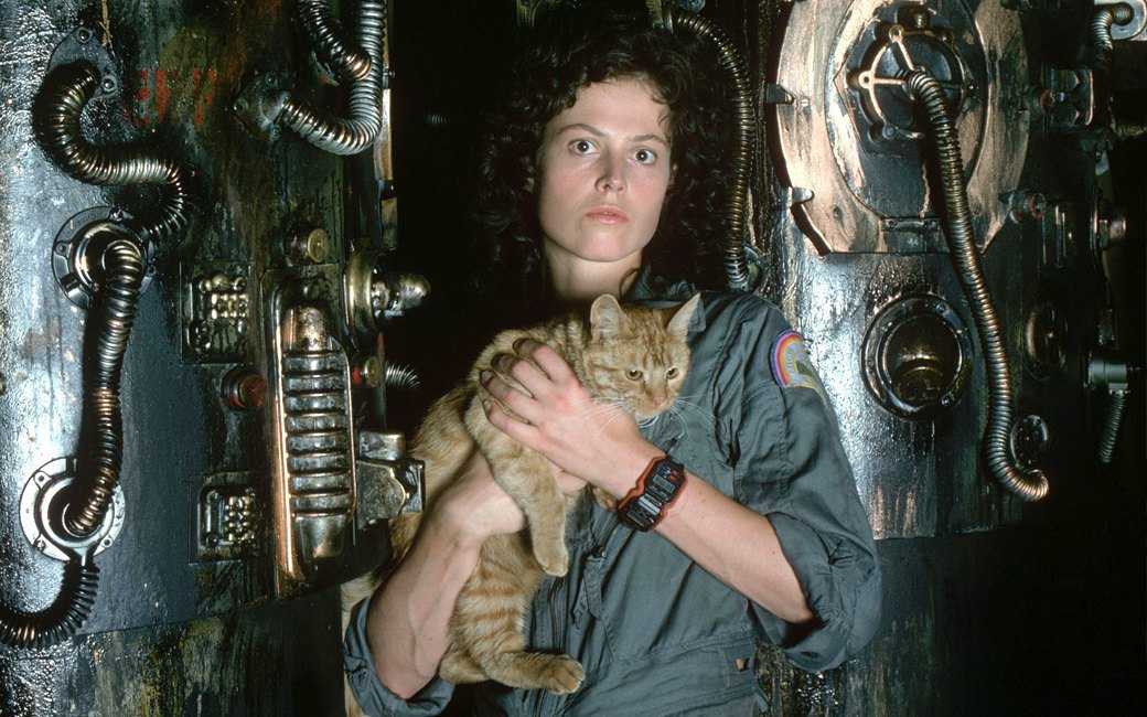 Наглая морда: Лучшие рыжие  коты в кино . Изображение № 4.