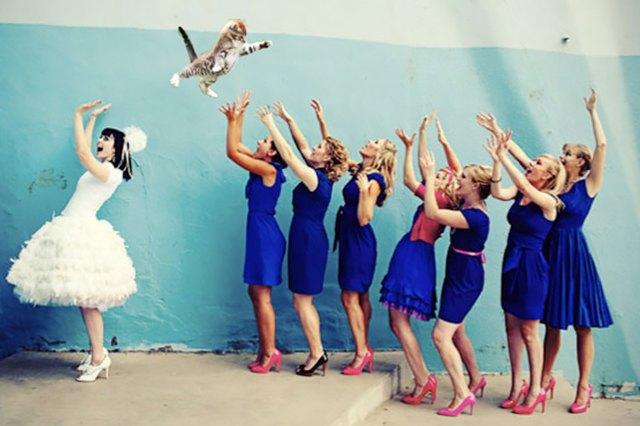 Блог Brides Throwing Cats про невест и летающих кошек. Изображение № 4.