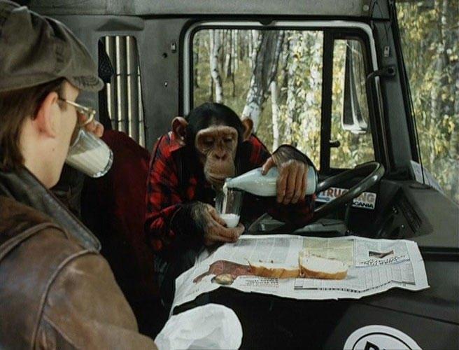 Великий фильм о любви: «Нежный возраст»  Сергея Соловьева. Изображение № 3.