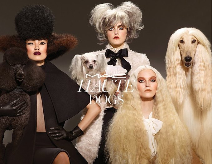 Неожиданный альянс: MAC  и собаки, CoverGirl  и «Звездные войны». Изображение № 8.