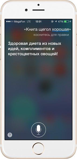 Поговори с ней: Интервью  с русскоязычной Siri. Изображение № 8.