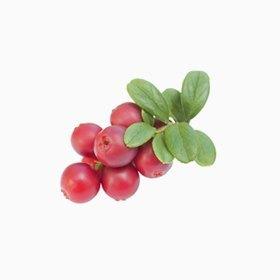 Что есть осенью: 10 полезных сезонных продуктов. Изображение № 9.