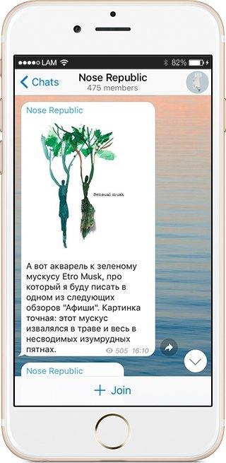 На кого подписаться: Телеграм-канал о парфюмерии Nose Republic. Изображение № 5.