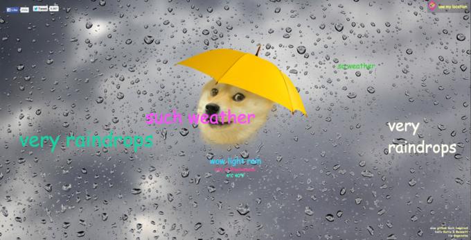 Собака-мем Doge  стала синоптиком. Изображение № 7.