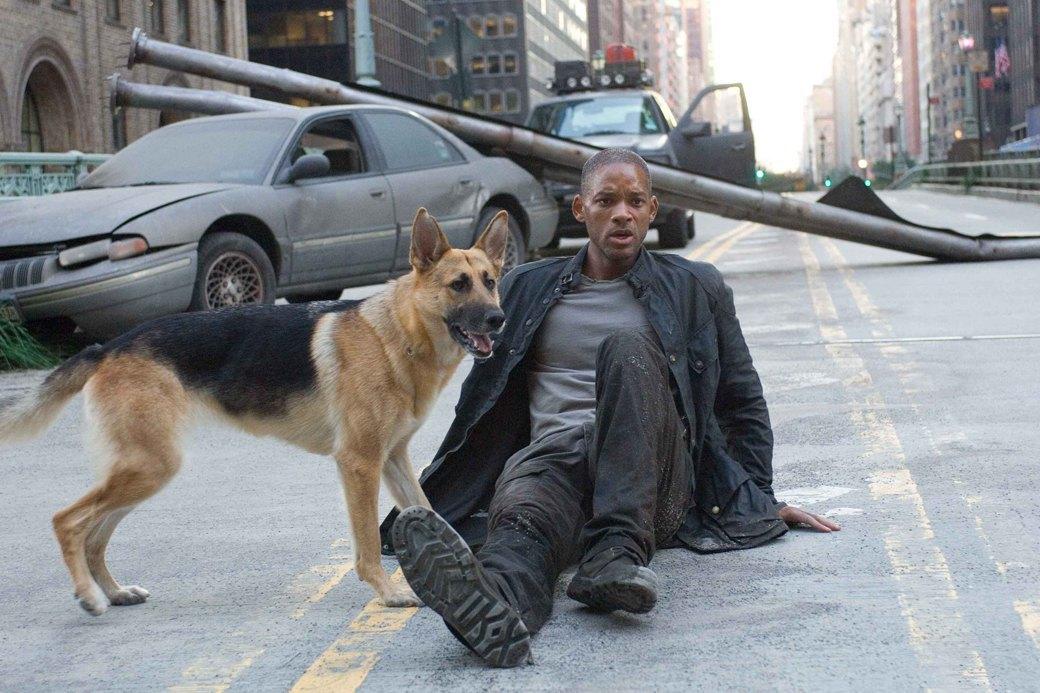 Верный друг: 10 фильмов с любимыми собаками в важной роли. Изображение № 7.