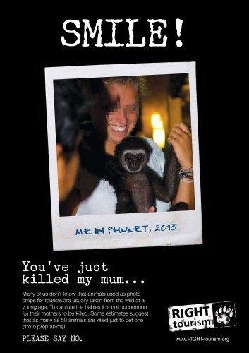 Запустилась кампания против селфи с дикими животными. Изображение № 1.