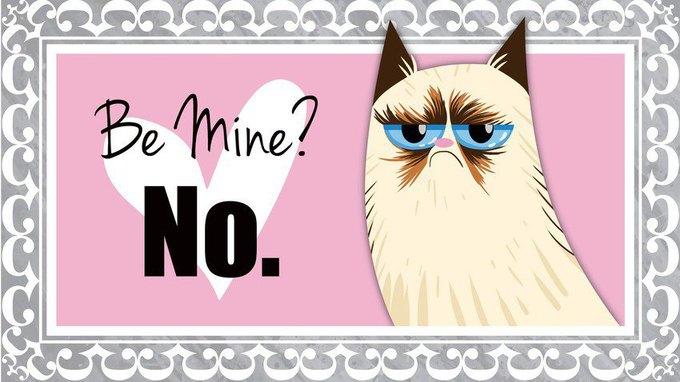 Grumpy Cat стала героиней угрюмых валентинок. Изображение № 4.
