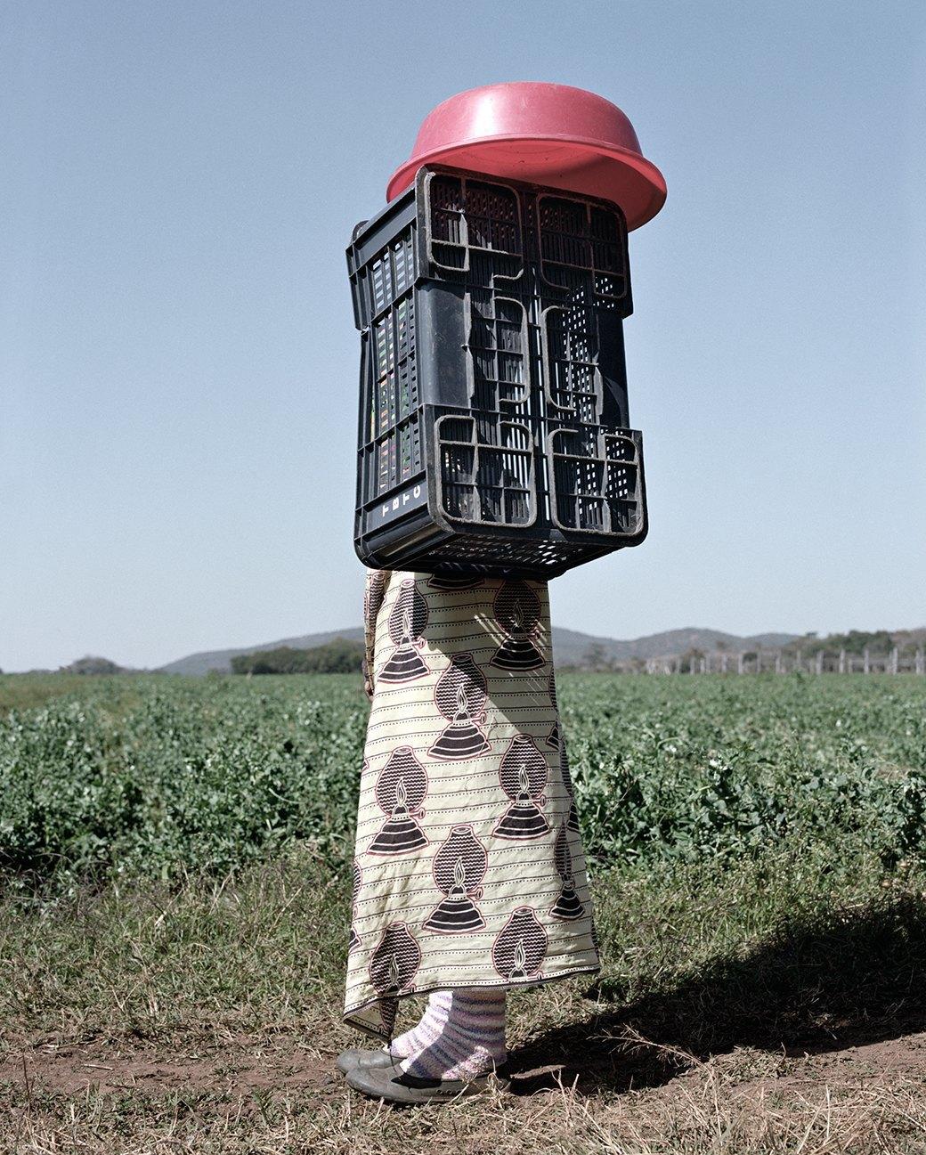 «Местность»: Обезличенный труд африканских крестьян. Изображение № 13.
