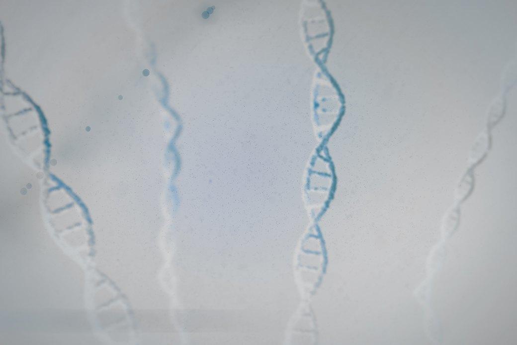 Плохое наследство: Стоит ли бояться генетических болезней. Изображение № 1.