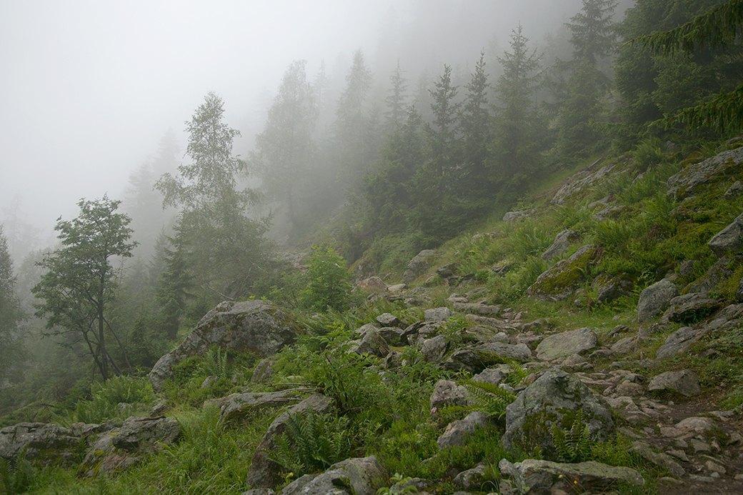 Хайкинг над облаками  и сыры в долине Шамони. Изображение № 5.