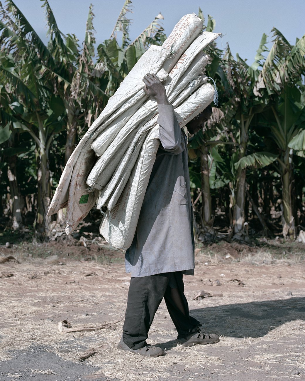 «Местность»: Обезличенный труд африканских крестьян. Изображение № 11.