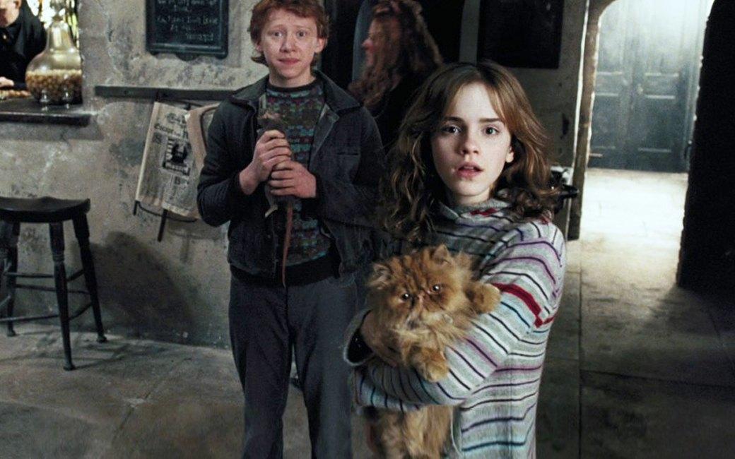 Наглая морда: Лучшие рыжие  коты в кино . Изображение № 6.