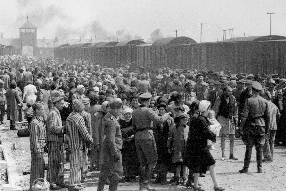 «Почувствовать себя человеком»: Истории женщин, которых не сломил Холокост. Изображение № 4.