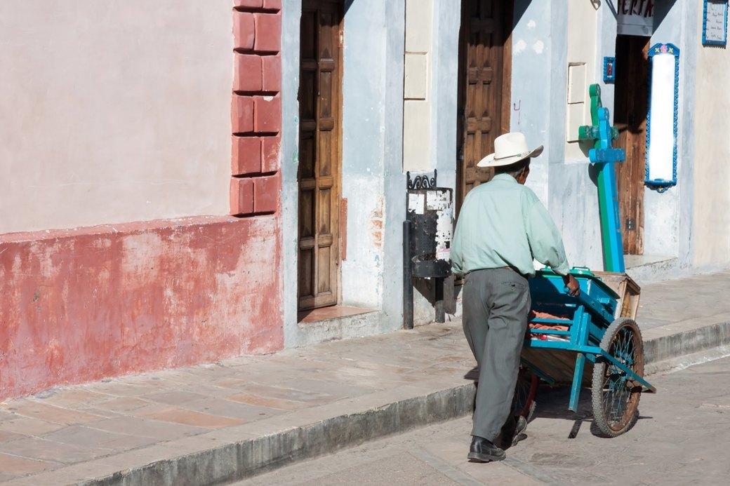 Потрогать кита и сплясать со скелетом: Как я переехала в Мексику. Изображение № 3.