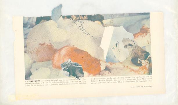 """Энтони Хегарти, """"Cut Away the Bad n.2"""", 2007.. Изображение № 3."""