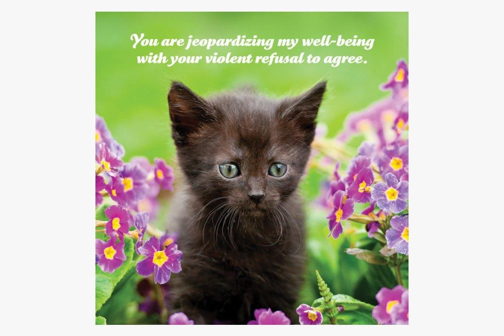 Календарь  со здравомыслящими  котятами на 2015 год. Изображение № 3.