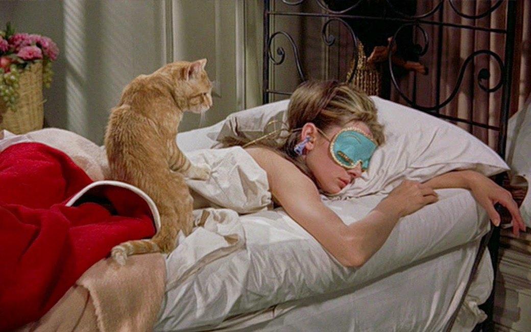 Картинки с рыжими девушками и котами