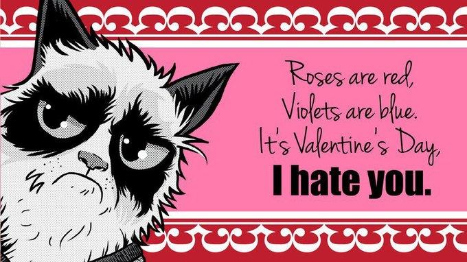Grumpy Cat стала героиней угрюмых валентинок. Изображение № 10.