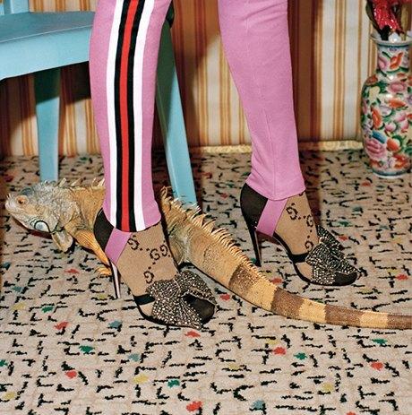 Танцуют все: Кампания Gucci, вдохновлённая 60-ми. Изображение № 6.