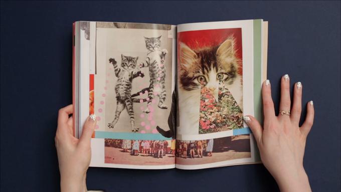 Cat People:  Журнал об одержимости кошками. Изображение № 4.