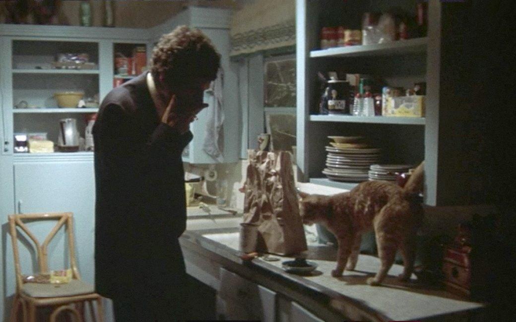 Наглая морда: Лучшие рыжие  коты в кино . Изображение № 10.
