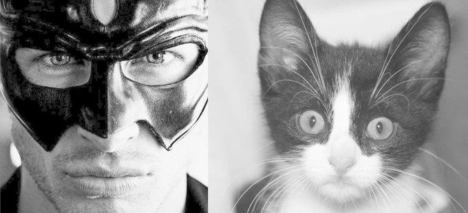 Тумблог  с мужчинами и котами Des Hommes et des Chatons. Изображение № 7.
