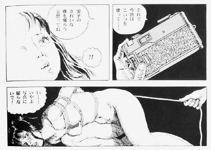 Почему в Японии  отказываются от традиционного секса. Изображение № 8.