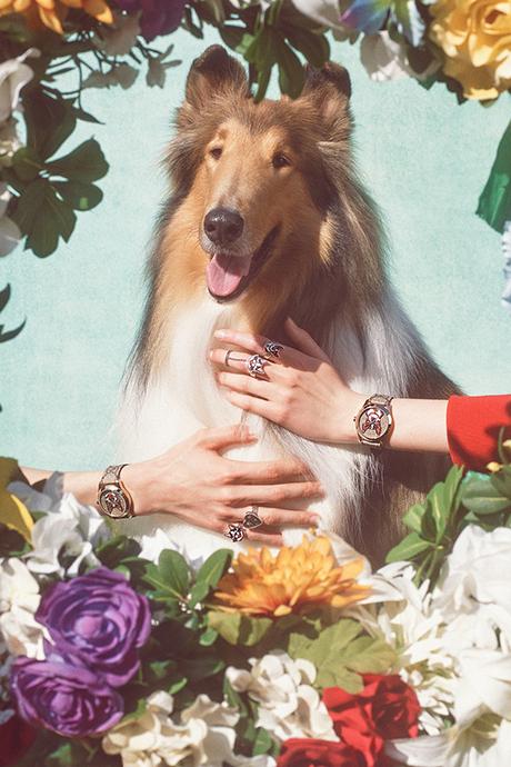 Новая кампания Gucci с умилительными псами. Изображение № 9.
