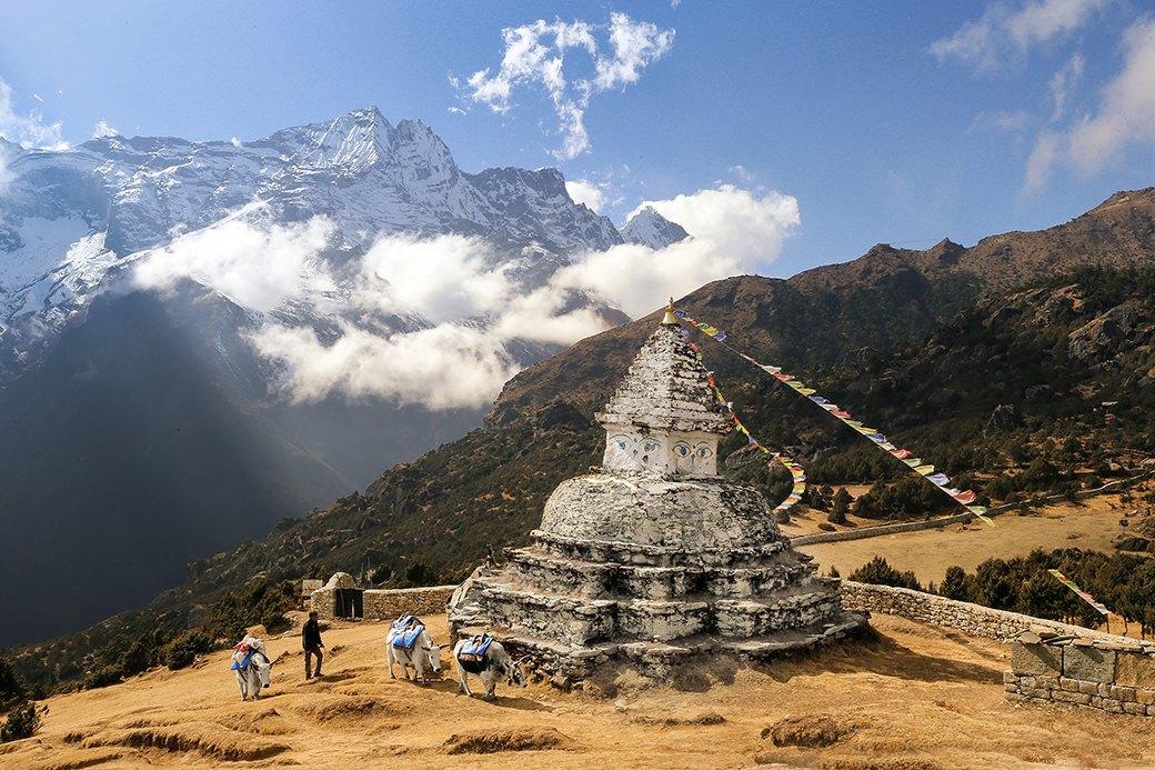 Как путешествовать  в одиночку: 9 месяцев  в Индии и Непале . Изображение № 10.