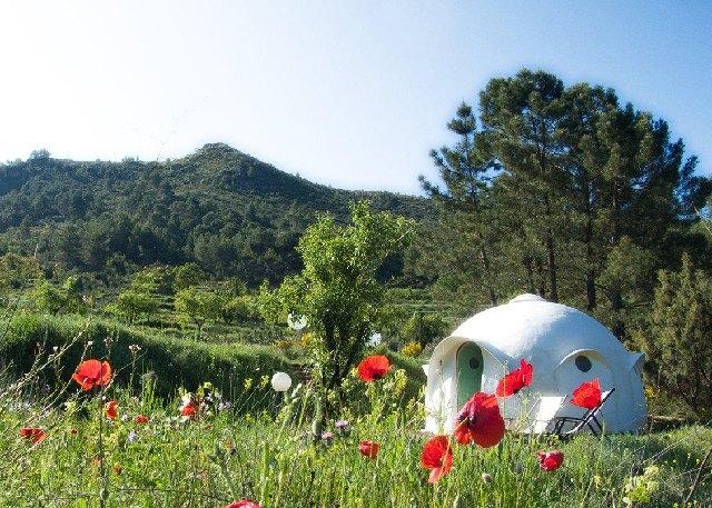 Рай в шалаше: 10 европейских глэмпингов. Изображение № 3.
