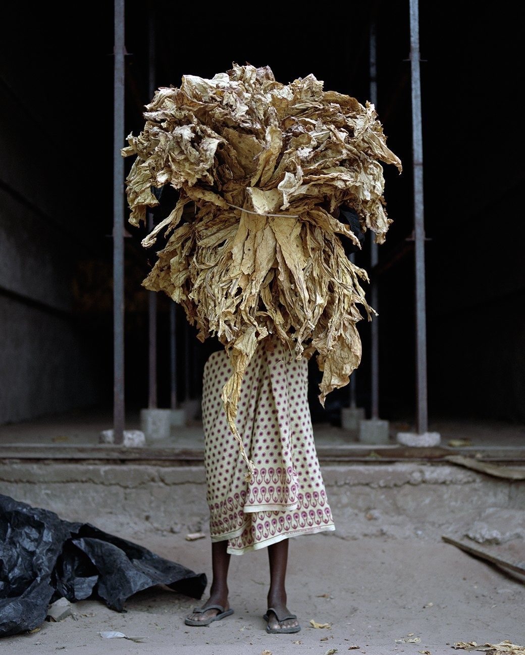 «Местность»: Обезличенный труд африканских крестьян. Изображение № 7.