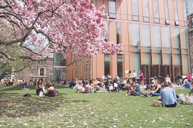 Лучшие женские университеты мира. Изображение № 5.