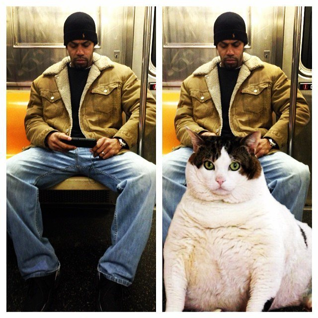 Открытие века: Почему мужчины занимают два места в метро. Изображение № 1.