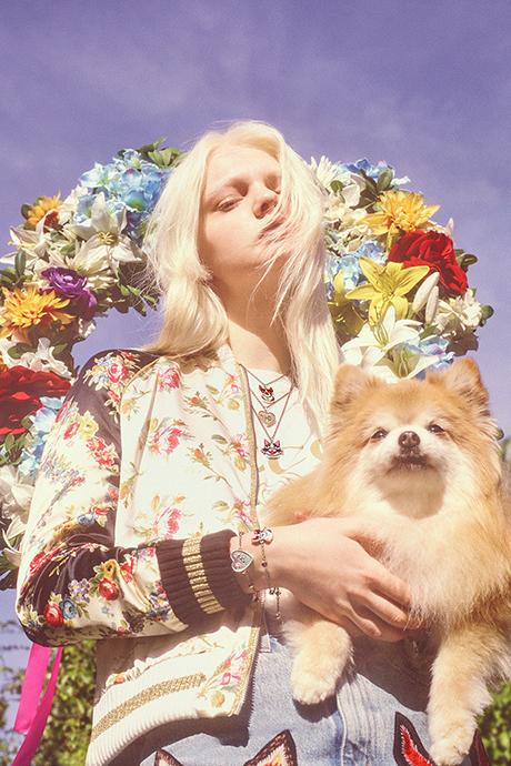 Новая кампания Gucci с умилительными псами. Изображение № 14.