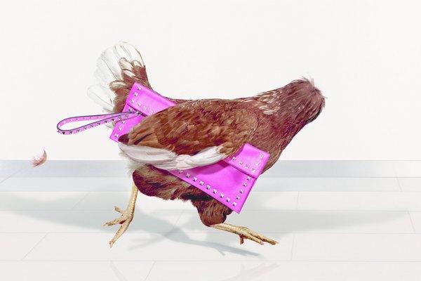 Для кампании магазинов Harvey Nichols сняли безголовых куриц. Изображение № 3.